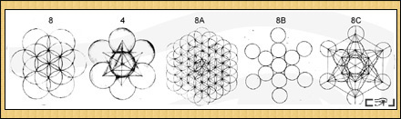 Flower of Life Creation Diagram